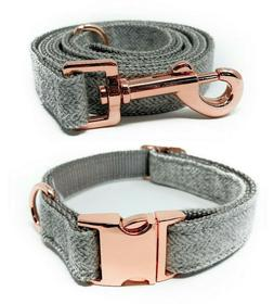 Cute Gray & Rose Gold Heavy Duty Nylon Adjustable Dog Collar