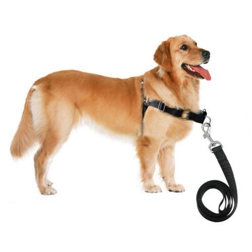 Heavy Duty Leading No Dog Harness Lead